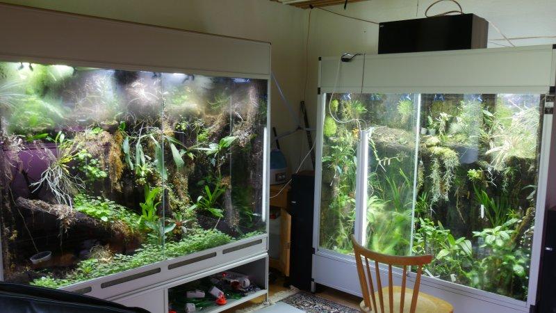 led wuchslicht pflanzenlicht seite 2 orchideenforum. Black Bedroom Furniture Sets. Home Design Ideas
